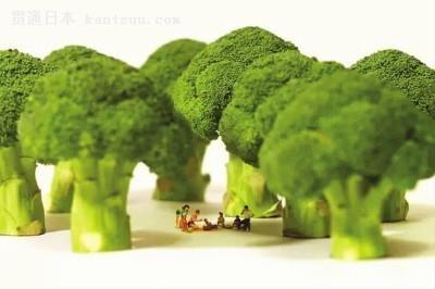 日本80后爱微缩摄影:西兰花变大树 树叶成小船